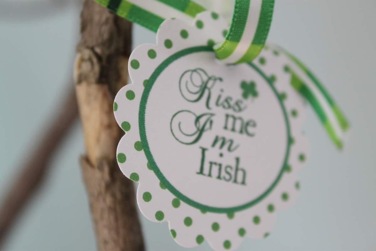 St Patricks Day St Patricks Day Party Ideas Photo 1