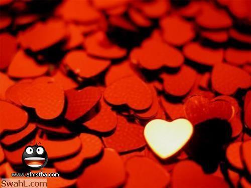 صور قلوب صور ورود متحركة صور ورود عيد الحب صور رومانسيه