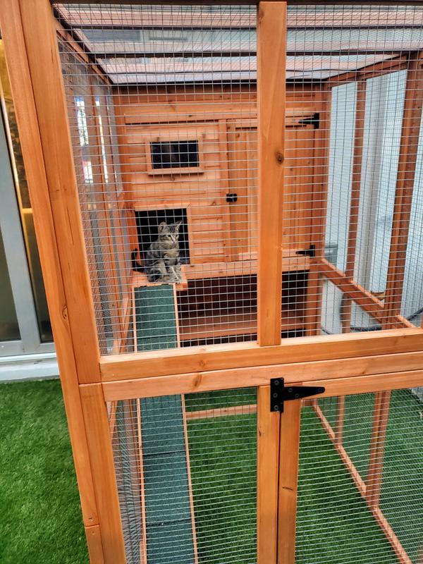 trixie wooden outdoor cat run 68 75 h