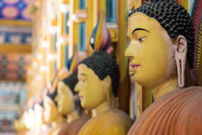 Reinkarnationen Buddahs im Wewrukannala Buduraja Mahaviharaya
