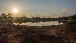 Sonnenaufgang im Yala Nationalpark