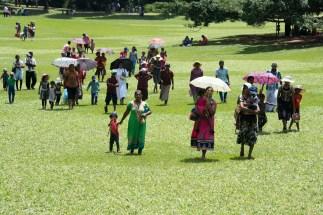 Ein Sonntag im botansichen Garten von Kandy