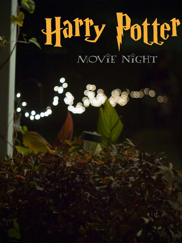 Harry Potter Movie Night Party Ideas Photo 1 Of 8