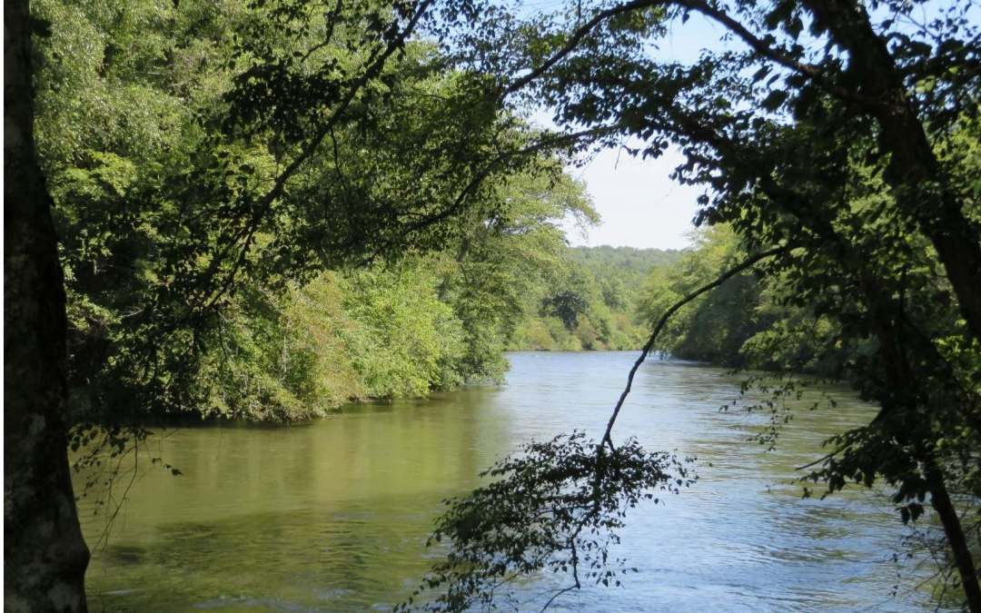 """Beautiful 1.41 Ac Toccoa River lot located in the gated community """"Riverwalk on the Toccoa"""". Not only does the lot offer 100 ft of river frontage w/easy level access into the river for endless fishing, tubing & kayaking; it also offers various building sites. While the lower portion of the lot offers views of the amazing scenery of river life along the Toccoa; the upper portion of the lot offers seasonal mountain views. The lot is currently unrestricted. However, if a Buyer chooses to join the HOA with restrictions & community amenities, they can do so. The lovely community includes paved roads and walking trails along the river's edge. The HOA offers an attractive common area w/rustic log pavilion & stone fireplace; Tiki bar, kayak & canoe storage area & boat launch into the river. The outdoor activities of this Blue Ridge location are endless, so come build on this lovely lot on the Toccoa River """"The Trout Capital of Georgia""""!"""