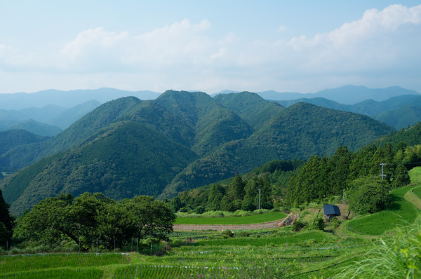 A great view overlooking the rice fields and mountains from a rest area along the Kumano Kodo trail.