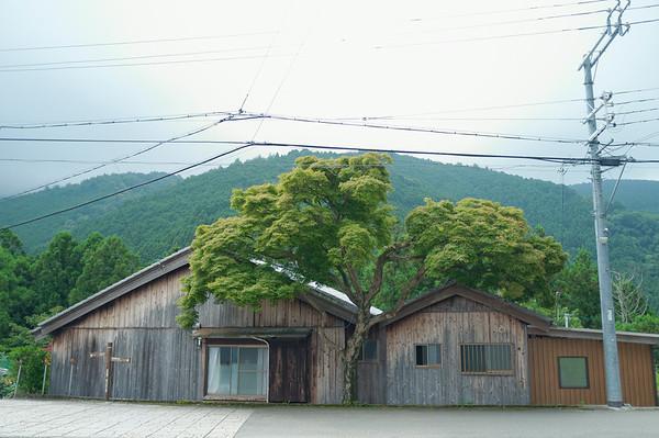 Starting the next day's hike towards Chikatsuyu