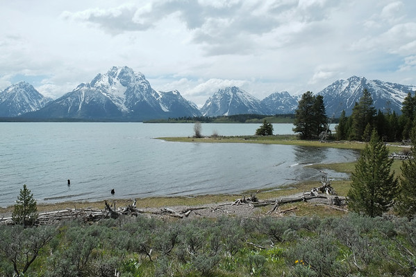 View of the Grand Tetons across the lake