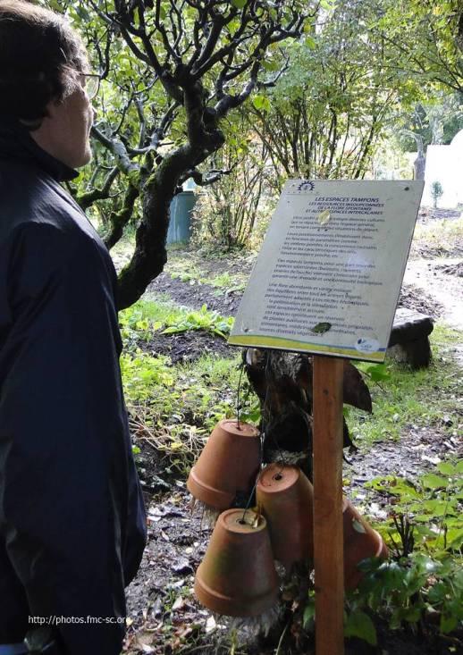 2017_eco_jardin (18)