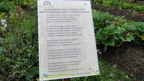 2017_eco_jardin (9)