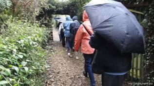 D'autres arrivent, sous la pluie, à l'éco-jardin solidaire