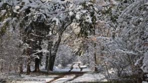 2018_02_lombreuil-neige (4)