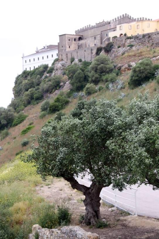 Chateau de Palmela