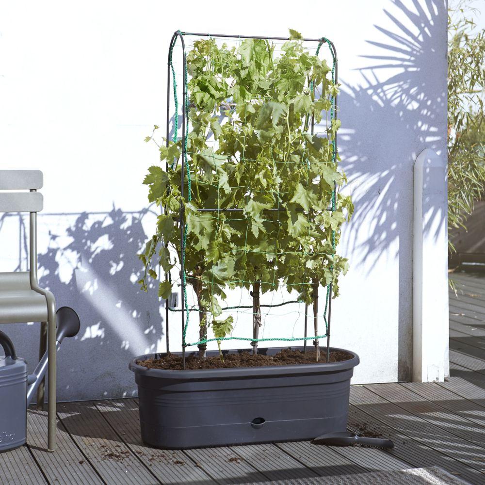 jardiniere avec treillis h130 x l78 cm elho