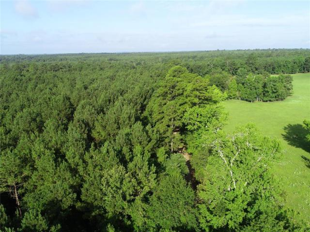 TIMBER TRACT!   This 74.94 acre tract is planted in 20-year old pine plantation and is under forestry management. The property is a deer haven! The owner reports large deer on the property and excellent hunting. This pretty tract has a creek running through it. Call today to view this property!