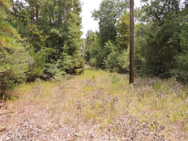GREAT HOME PLACE!   This 9-acre property is located just a few hundred yards from Highway 21 W on CR 3355. It has some large trees and has never been cleared so you can pick the trees to keep! There is water and electricity available. Call us today to see this property.