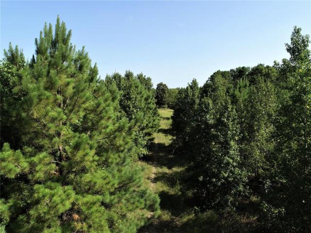 TIMBER PLANTATION!    This 237.507 acre tract is the perfect recreational property! The owner reports deer everywhere! There is a wet weather creek that runs the length of the property and normally has a good water supply. The property has lots of road frontage on Flat Prairie Road. The pine plantation is 20+ years old and is ready for thinning! If you're looking for hunting and timberland, this is a must see!