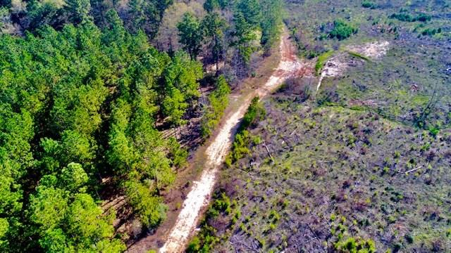 TIMBER PLANTATION / RECREATIONAL TRACT!   This 238 acre tract has frontage on 287 North of Latexo. There is water and electricity available at the road. This property consists of some large established pines and some that have been cut and replanted. There is a road through the center of the property. Owner reports good deer hunting. Call us today to schedule a showing.