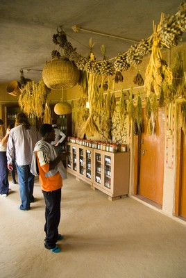 Seed bank at Bija Vidyapeeth