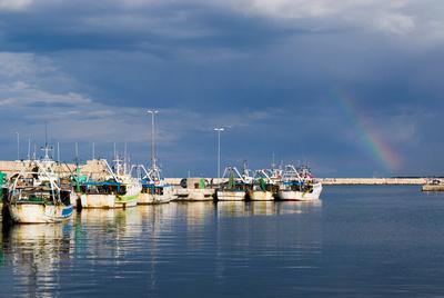 Mola di Bari harbour