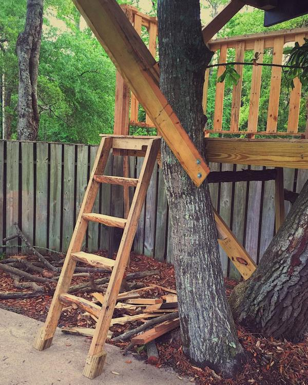 This ladder was super fun to make. It's an interesting challenge to cut in half round-ish raw logs from your yard without a proper table saw.