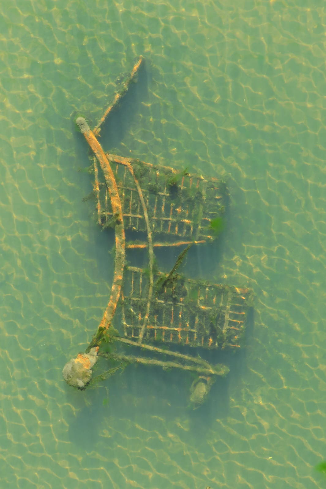 Rusty shopping cart under water