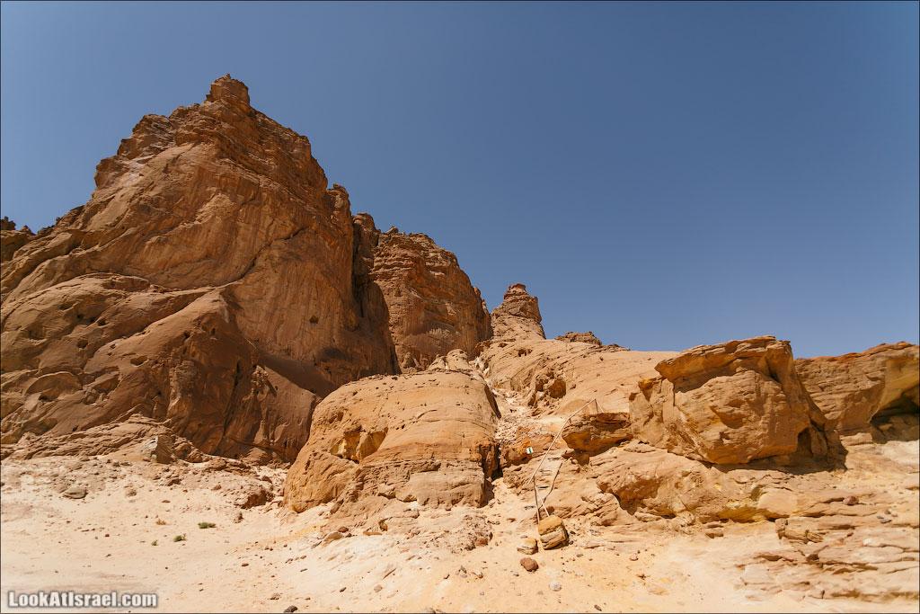 Парк Тимна | LookAtIsrael.com - Фото путешествия по Израилю