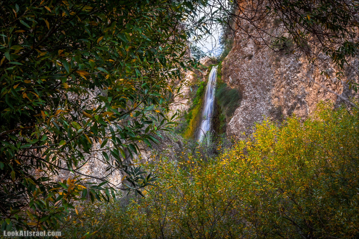 Водопады ручья Аюн | Ayun waterfalls | LookAtIsrael.com - Фото путешествия по Израилю