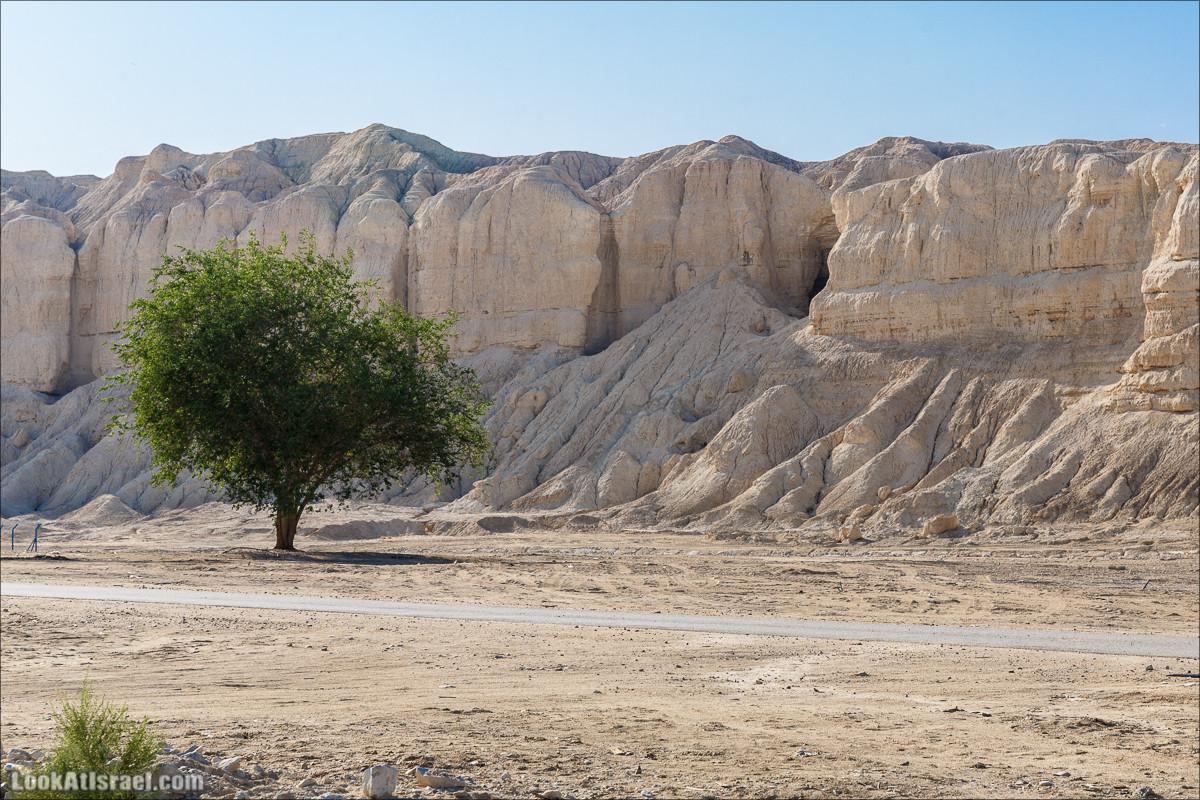 Внедорожное путешествие по пустыне | LookAtIsrael.com - Фото путешествия по Израилю