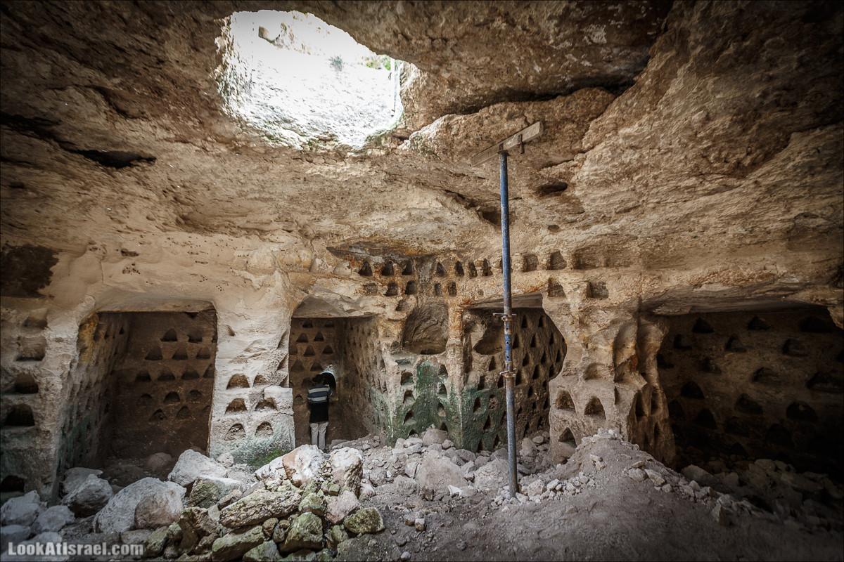 Бейт Лойа - пещеры и цветочные поля Негева и южной Шфелы | LookAtIsrael.com - Фото путешествия по Израилю