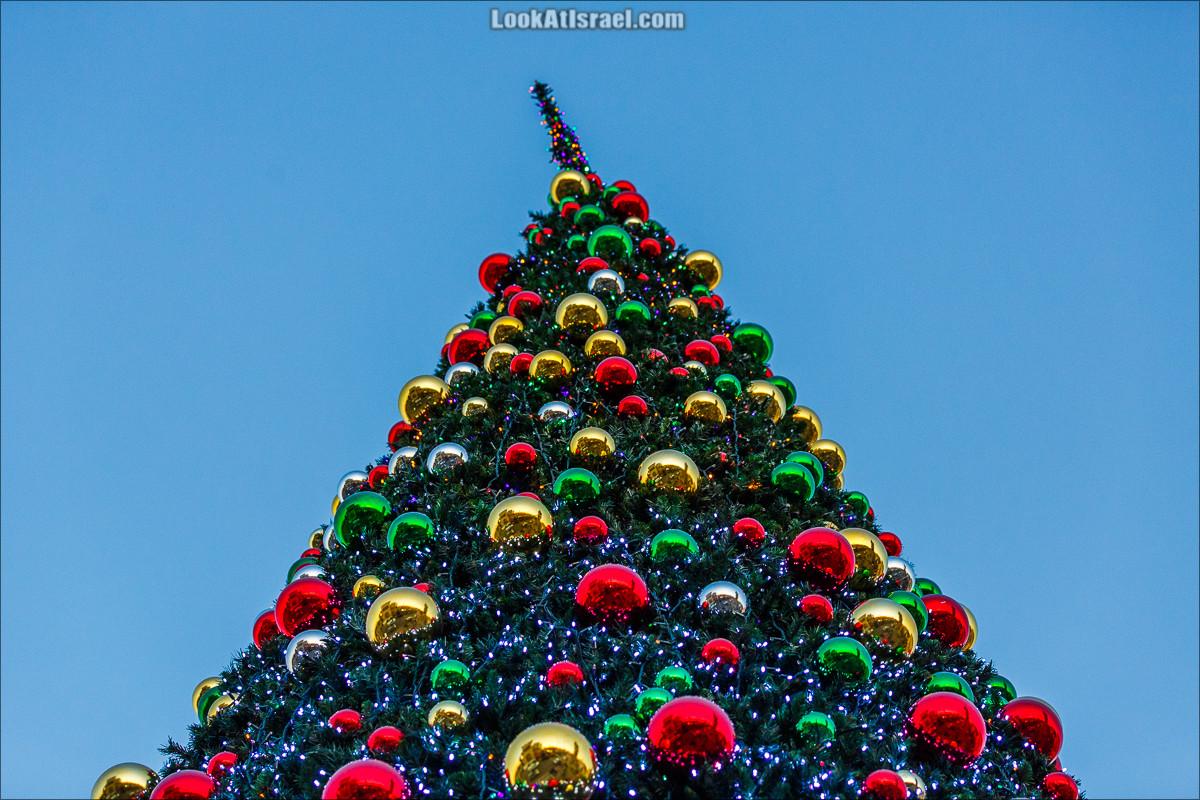 Рождественская ёлка в Яффо | LookAtIsrael.com - Фото путешествия по Израилю