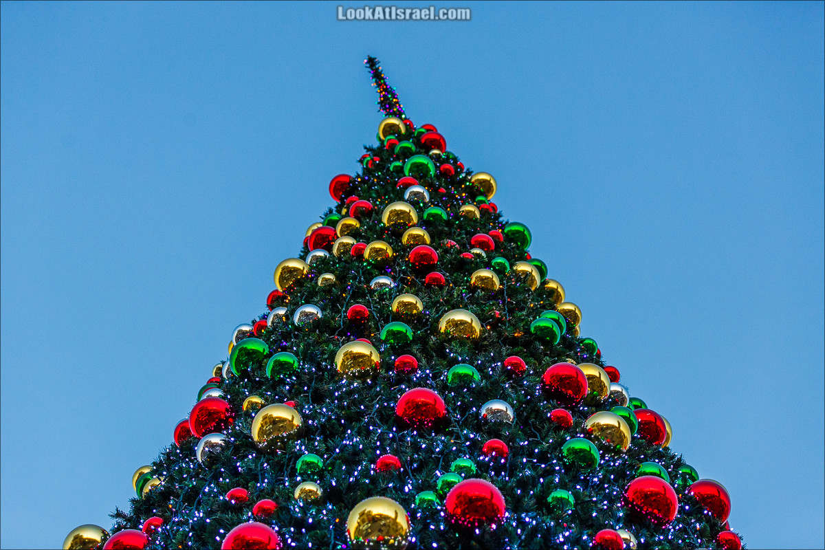 Рождественская ёлка в Яффо   LookAtIsrael.com - Фото путешествия по Израилю