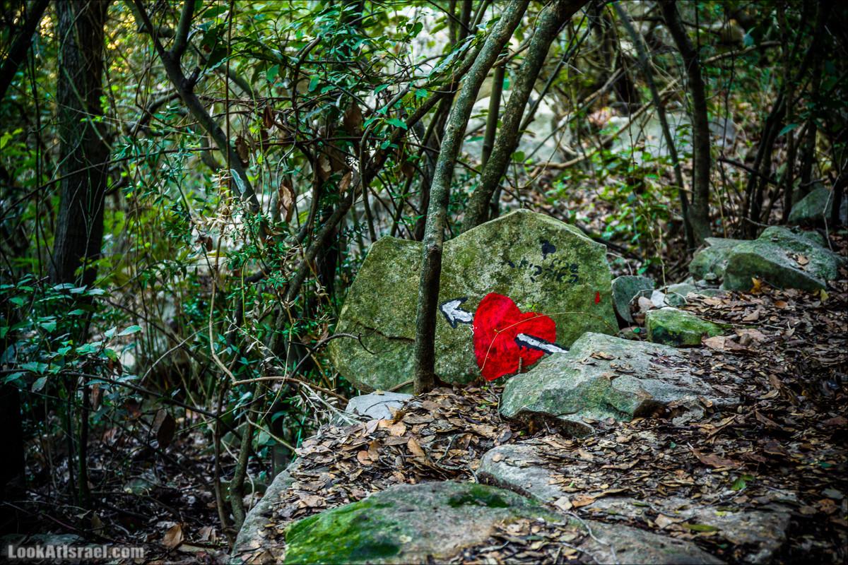 Гора Бетах и тропа Нормана | Betah mount and Norman's Trail | הר בטח ושביל נורמן | LookAtIsrael.com - Фото путешествия по Израилю
