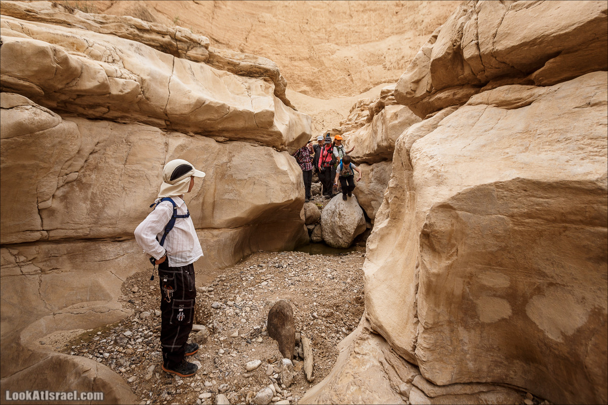 Ущелье Нахаль Ог | Wadi Nahal Og | נחל אוג | LookAtIsrael.com - Фото путешествия по Израилю