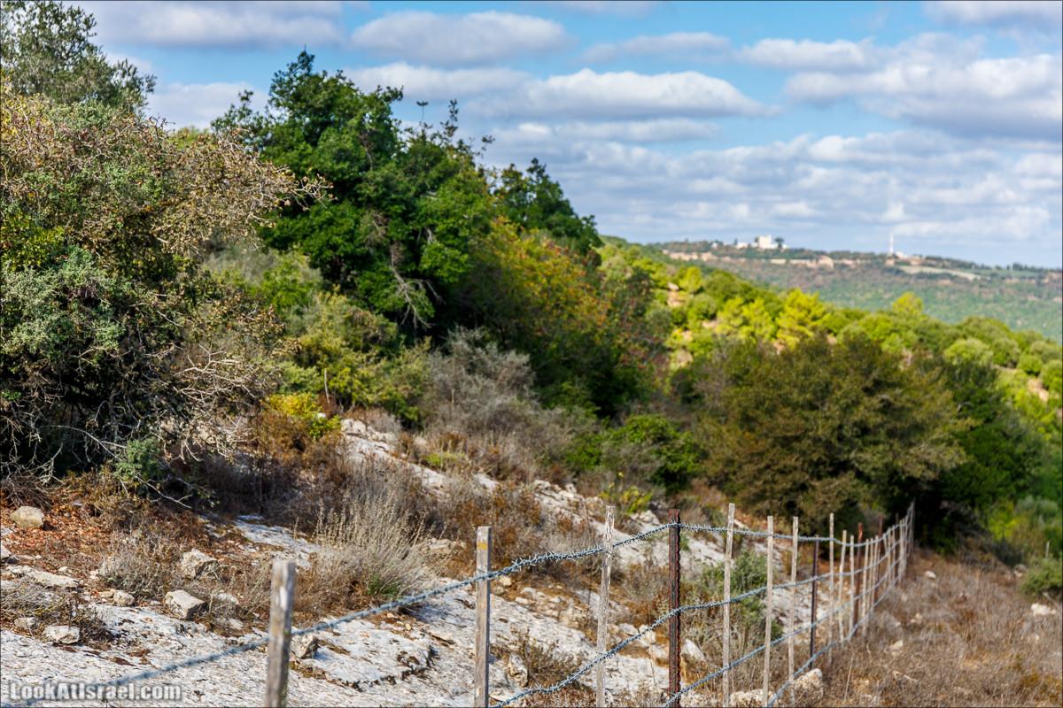 Необычная геология верхней Галилеи | LookAtIsrael.com - Фото путешествия по Израилю