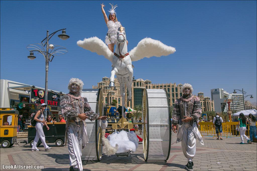 Случайные фотографии из жизни Эйлата | LookAtIsrael.com - Фото путешествия по Израилю