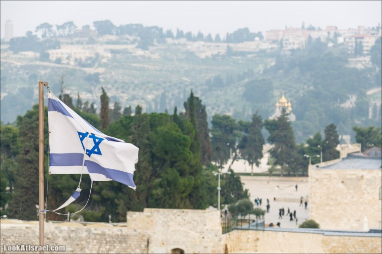 Крошки Иерусалима - случайные фотографии из жизни столицы Израиля   LookAtIsrael.com - Фото путешествия по Израилю