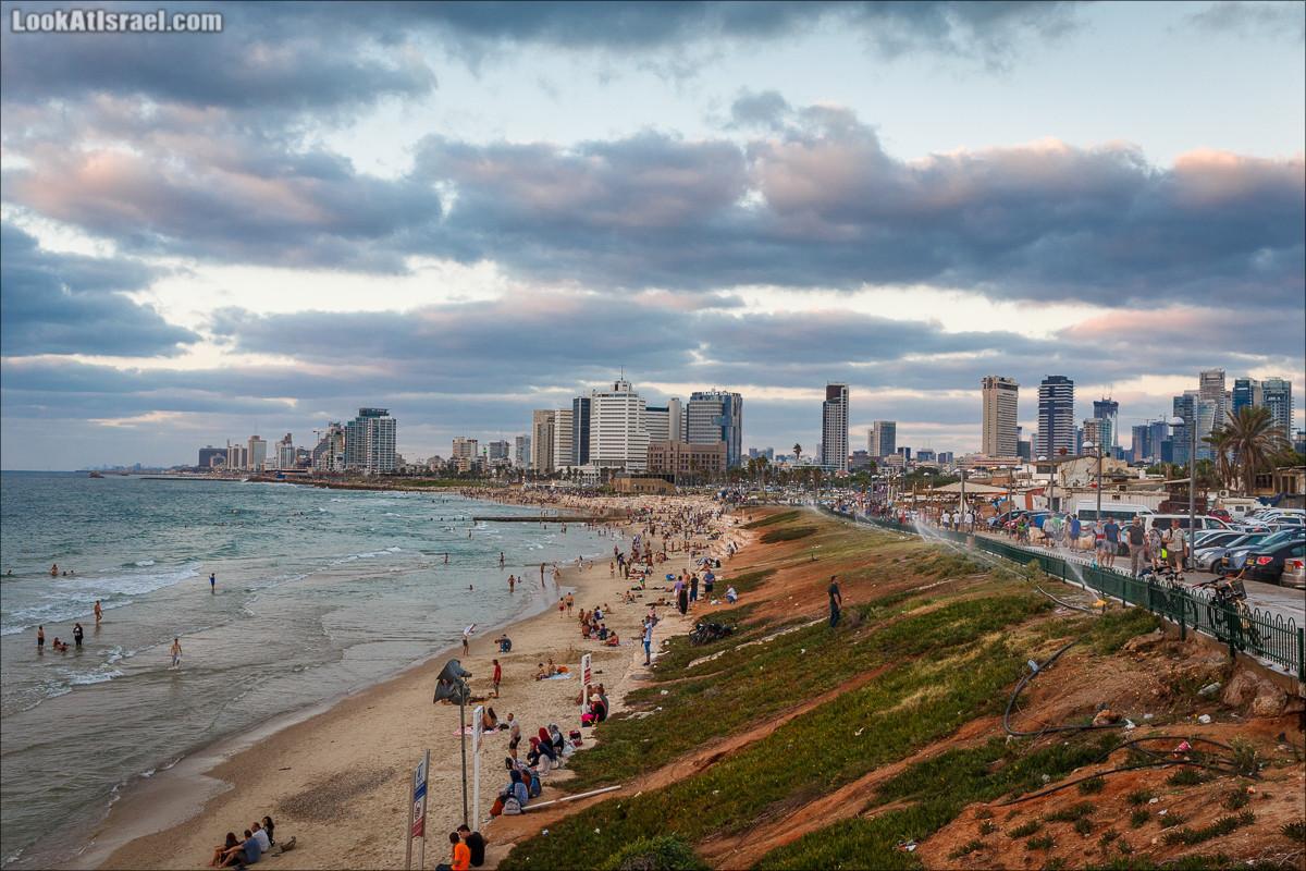 Крошки Тель-Авива - случайные фотографии из жизни Тель-Авива   LookAtIsrael.com - Фото путешествия по Израилю