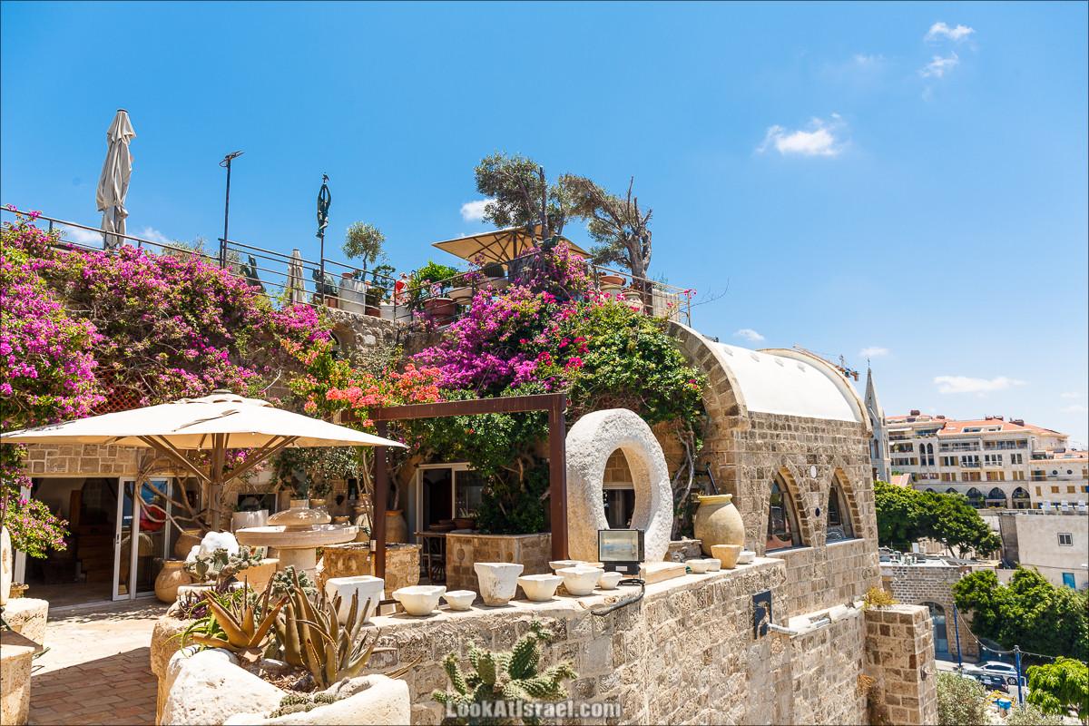 Крошки Тель-Авива - случайные фотографии из жизни Тель-Авива Яффо | LookAtIsrael.com - Фото путешествия по Израилю