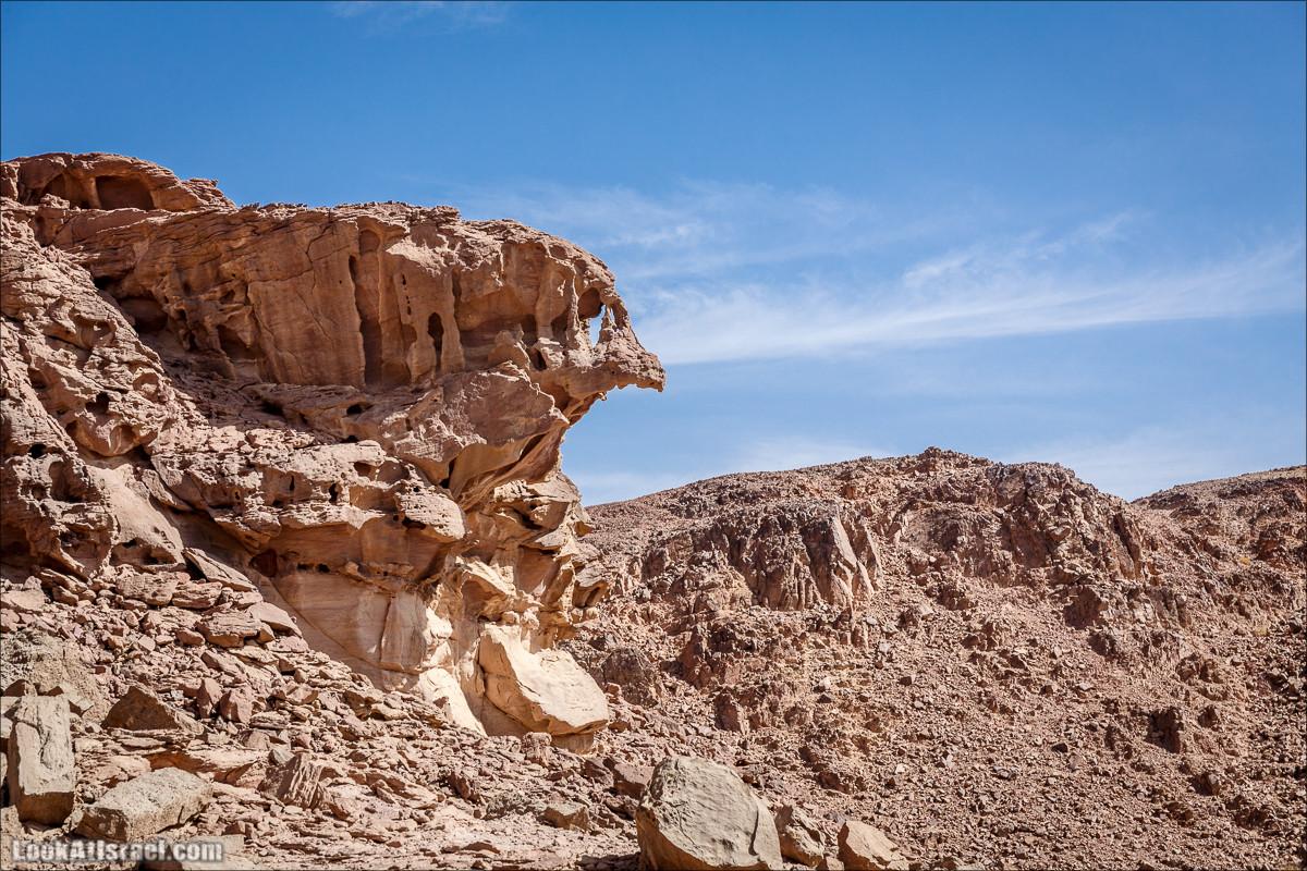 Гора Тимна и каньоны долины | LookAtIsrael.com - Фото путешествия по Израилю