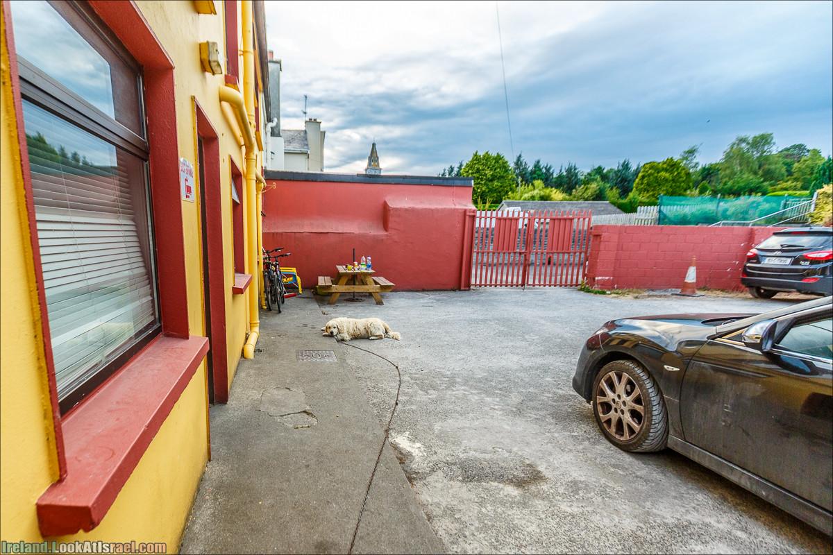 Уютный городок Килларни - LookAtIsrael.com путешествует по Ирландии