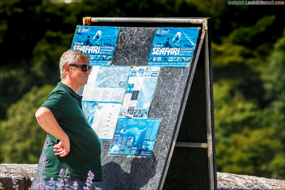 Кольцо Керри, Кенамар и виды Ирландинн   The Ring of Kerry, Kenmare   LookAtIsrael.com путешествует по Ирландии