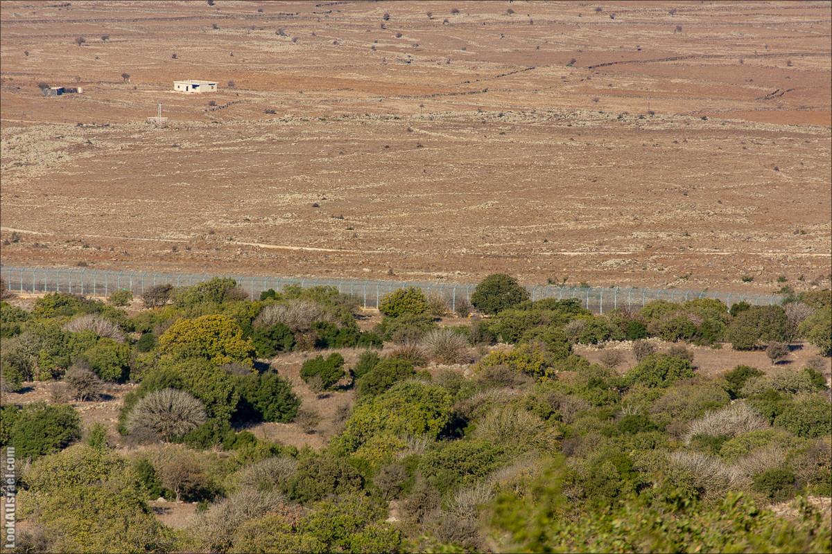 Голанские высоты | Golan heights | LookAtIsrael.com - Фото путешествия по Израилю