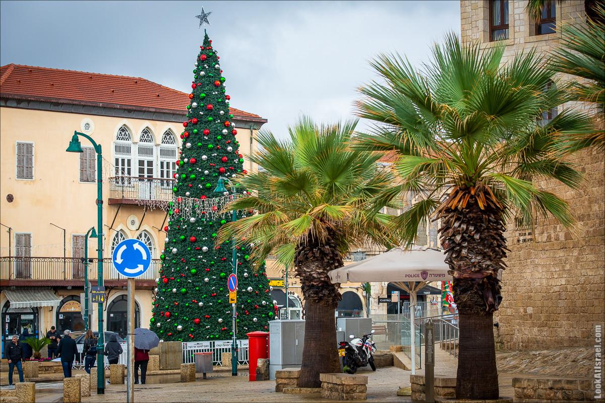 Рождественское зажжение ёлки 2019 в Яффо   LookAtIsrael.com - Фото путешествия по Израилю