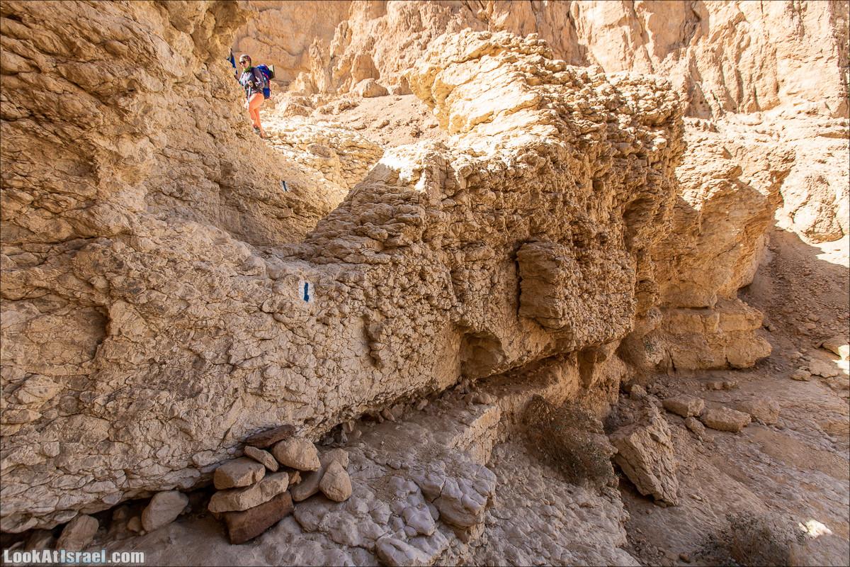 От Йотвата до Шахарут и обратно. 2-х дневный автономный маршрут | Hike from Yotvata to Shaharut and back | מסלול מיוטבתה לשחרות | LookAtIsrael.com - Фото путешествия по Израилю