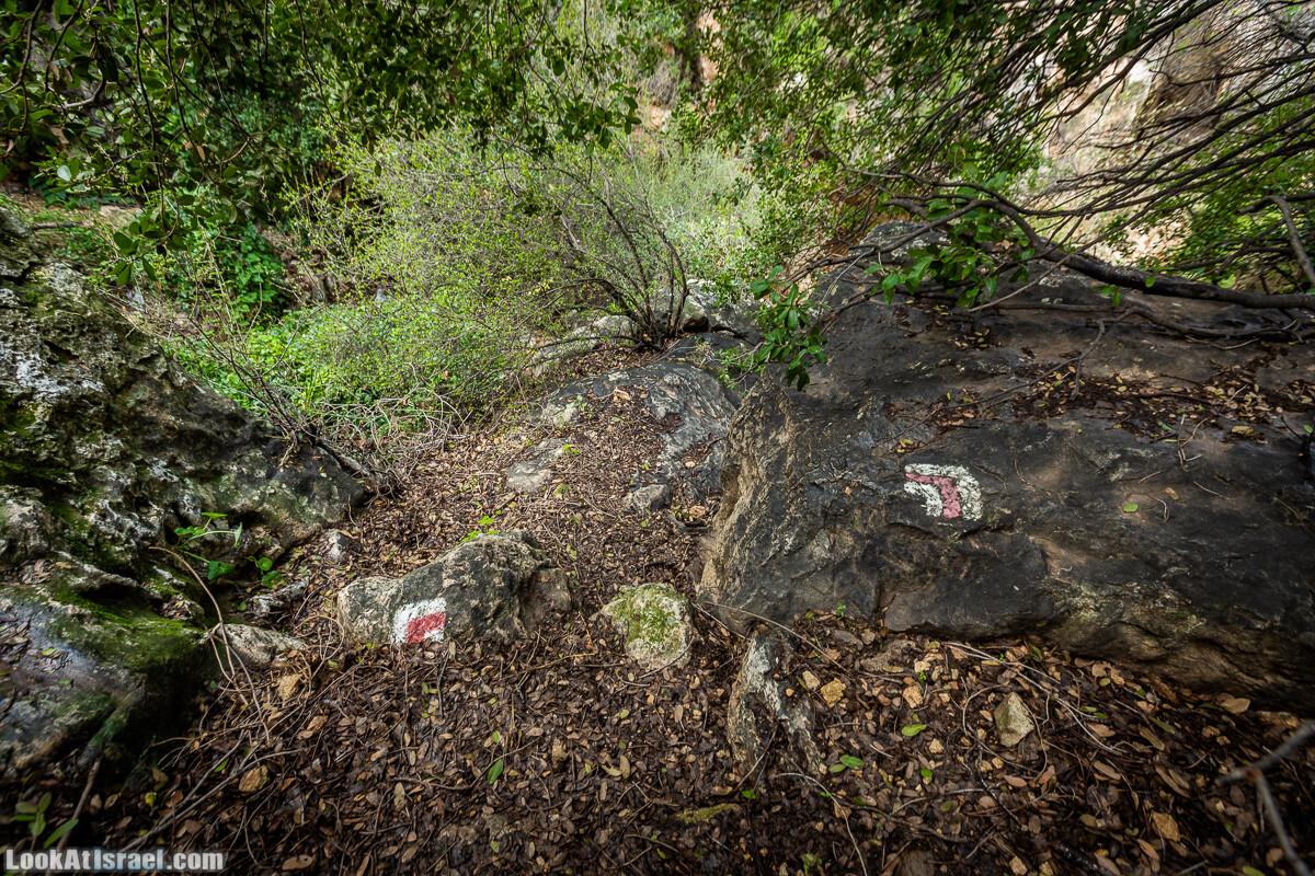 Путь Эммауса - по иерусалимским горам в долину Аялон   Emaus way   דרך אמאוס   LookAtIsrael.com - Фото путешествия по Израилю