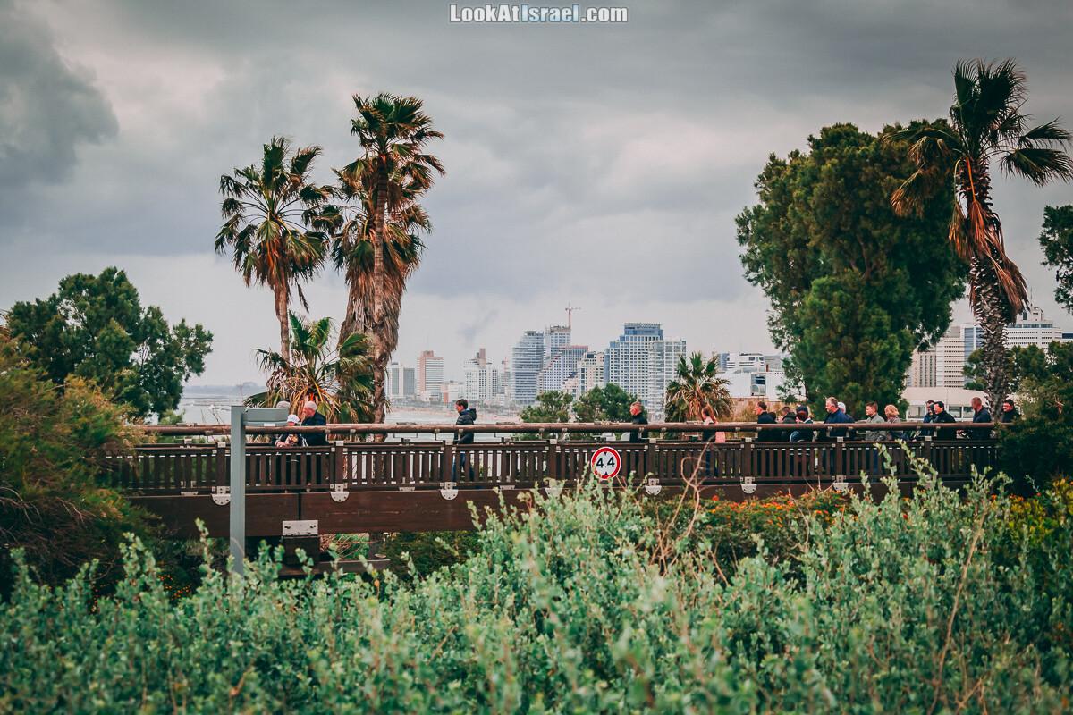 Главная тайна моста желаний в Яффо