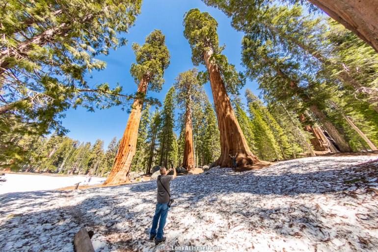 Национальный парк Секвойя, Калифорния| LookAtIsrael.com - Фото путешествия по Израилю