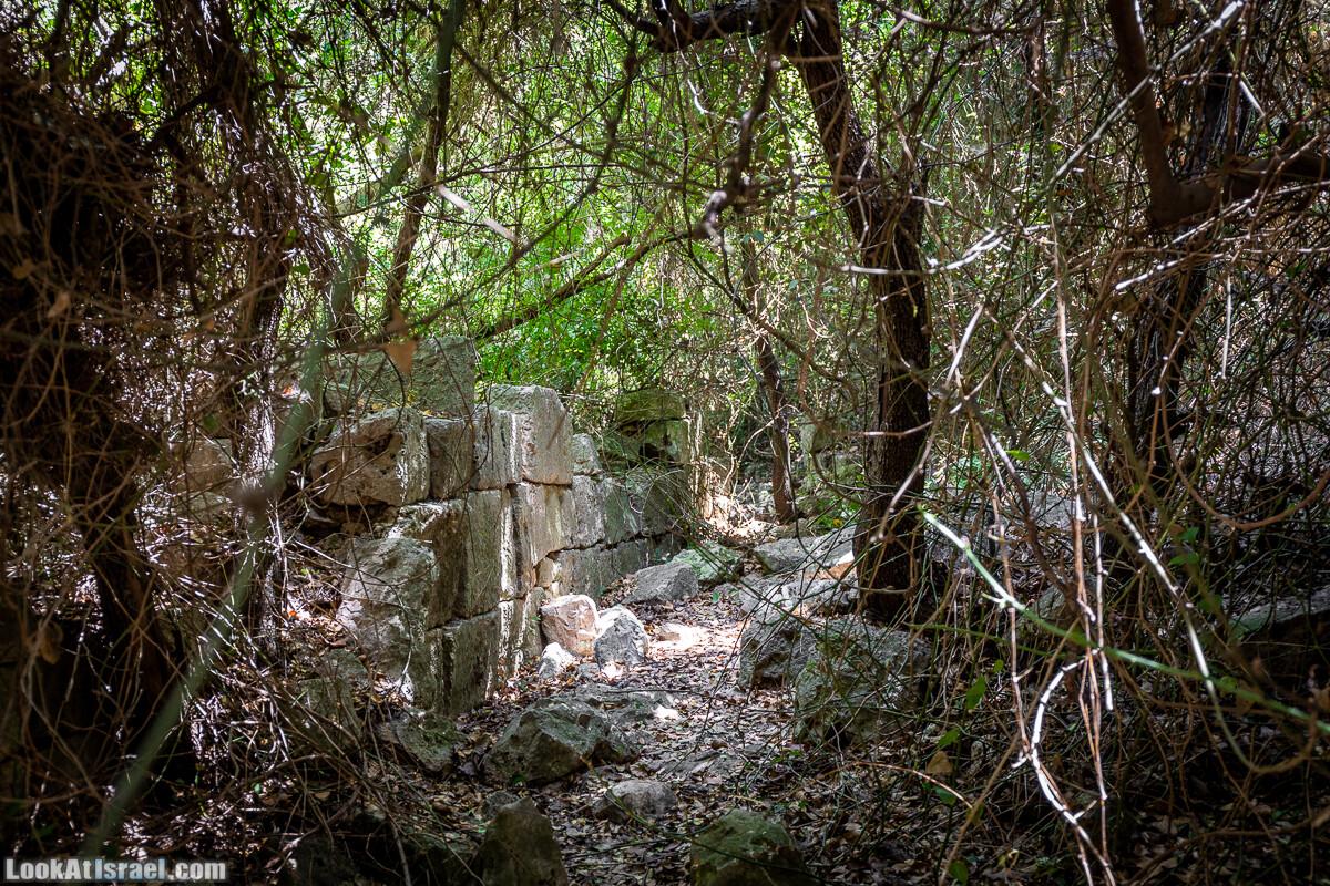 Хурват Цунам - Затерянный город в Галилее | חורבת צונם עיר אבודה בגליל | LookAtIsrael.com - Фото путешествия по Израилю
