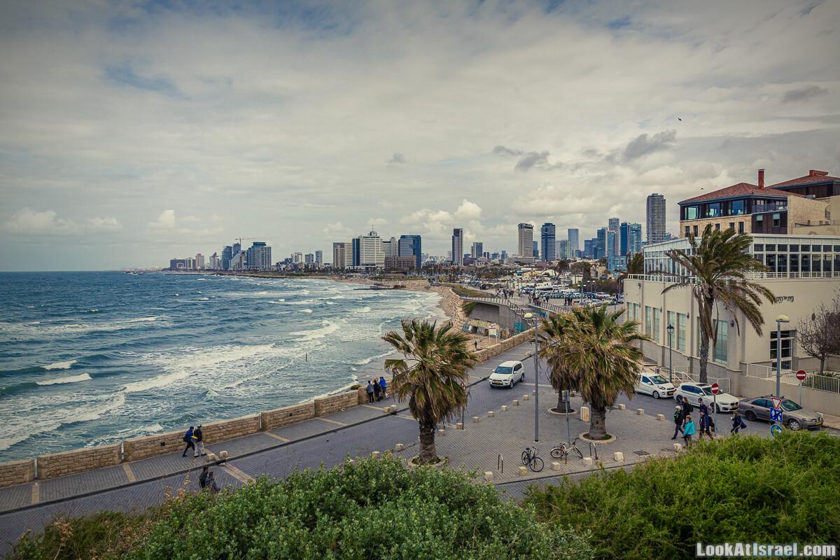 Случайные фотографии из жизни пятничного Тель-Авива 37