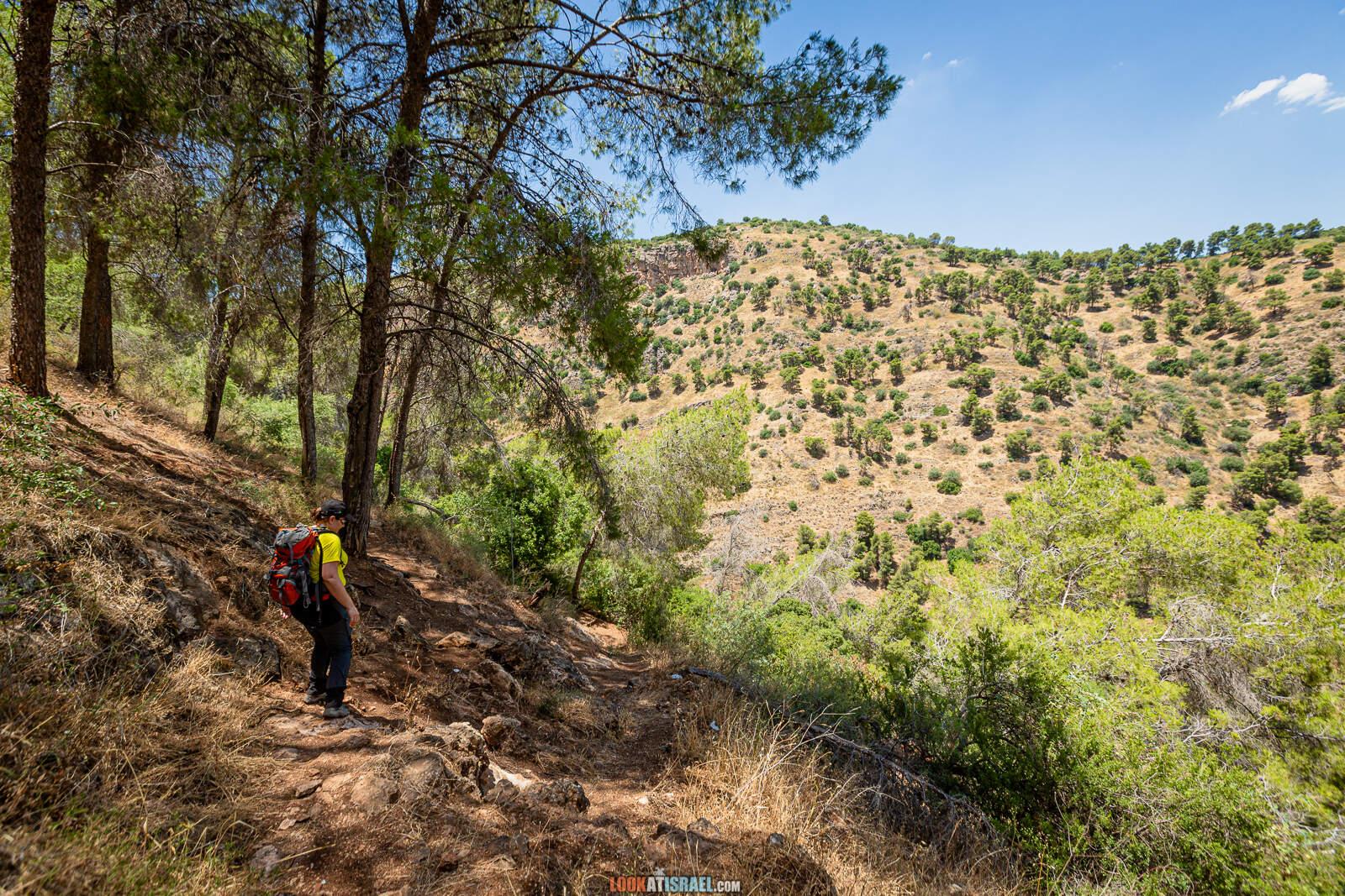 Тропа ПАЛЬМАХа | שביל הפלמח | LookAtIsrael.com - Фото путешествия по Израилю